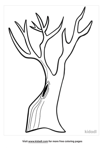 bare tree coloring page-2-lg.png