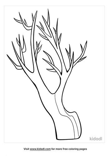 bare tree coloring page-3-lg.png
