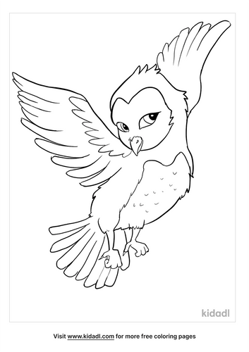 barn owl coloring page-2-lg.png