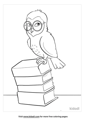 barn owl coloring page-4-lg.png
