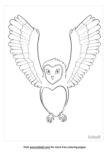 barn owl coloring page-5-lg.png
