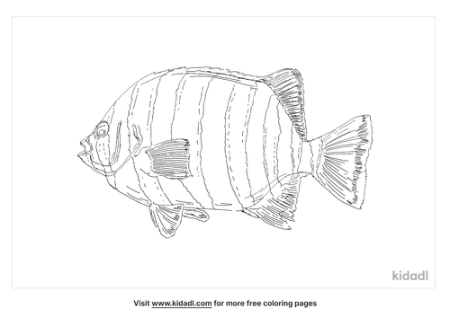 barred-knifejaw-coloring-page