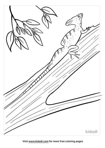 basilisk coloring page-2-lg.png