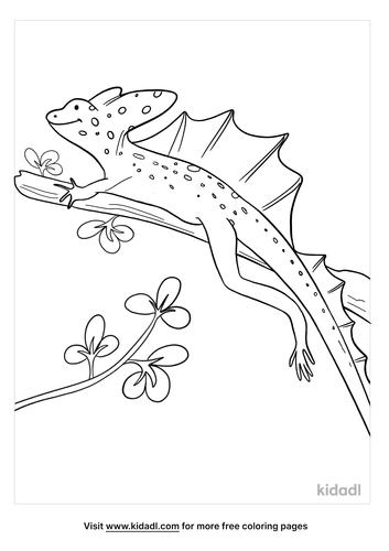 basilisk coloring page-3-lg.png