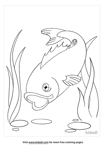 bass coloring page_2_lg.png