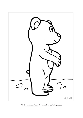bear-coloring-pages-2-lg.png