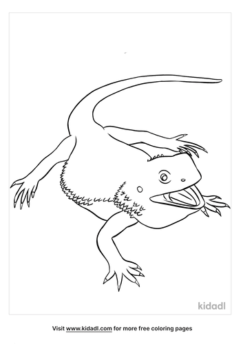 bearded dragon coloring page-5-lg.png