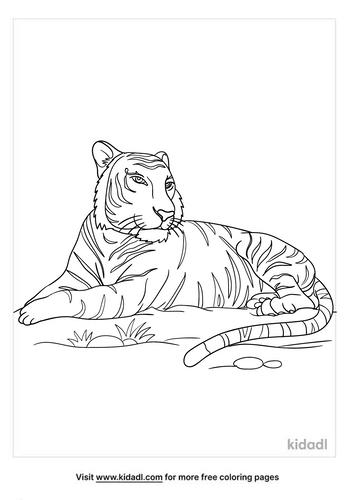 bengal tiger coloring page-2-lg.png