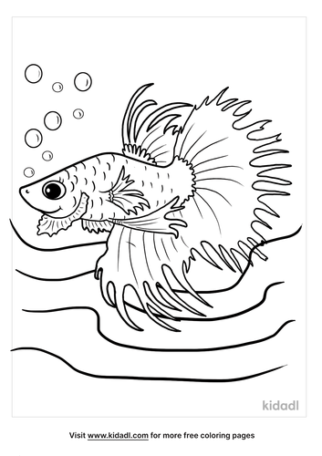 betta fish coloring page-3-lg.png