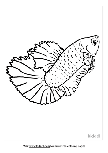 betta fish coloring page-4-lg.png