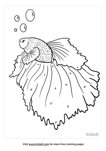 betta fish coloring page-5-lg.png