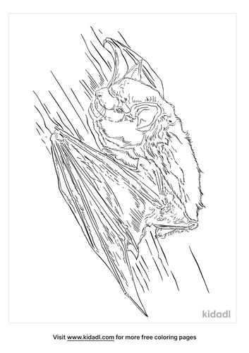 big-brown-bat-coloring-page