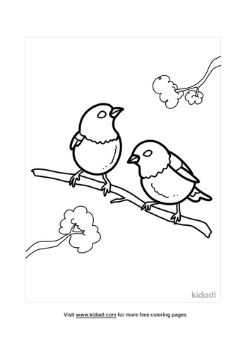 bird coloring pages-2-lg.png