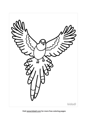 bird coloring pages-3-lg.png