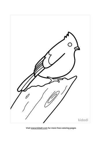 bird coloring pages-5-lg.png