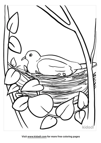 bird nest coloring page-3-lg.png