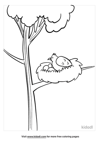 bird nest coloring page-4-lg.png