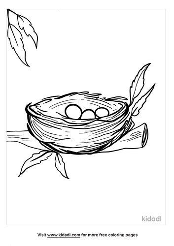 bird nest coloring page-5-lg.png