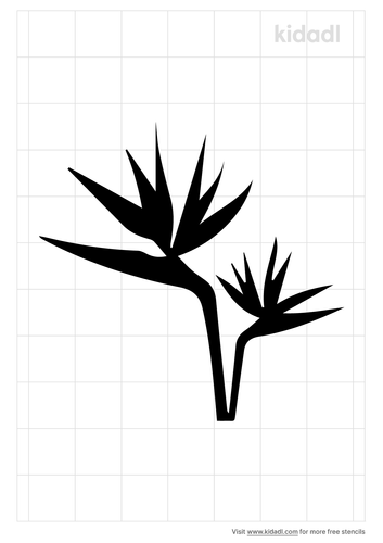 bird-of-paradise-flower-stencil.png