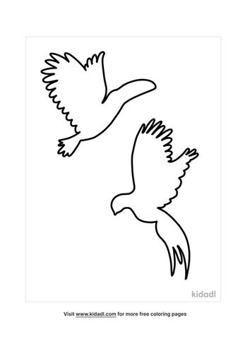 bird outline-2-lg.png