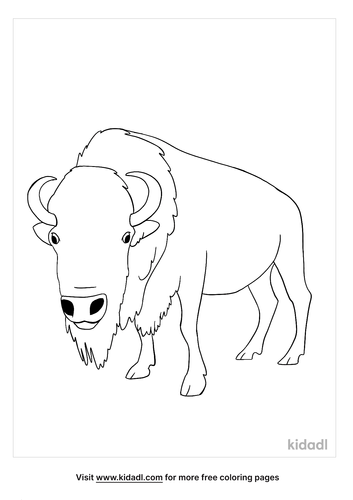 bison coloring page-4-lg.png