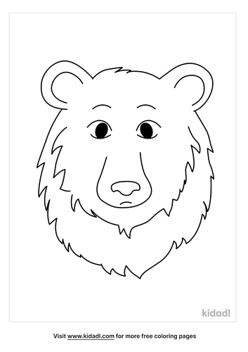 black bear picture_3_lg.png