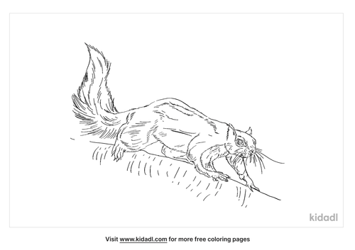 black-giant-squirrel-coloring-page