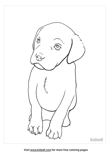 black lab coloring page_3_lg.png