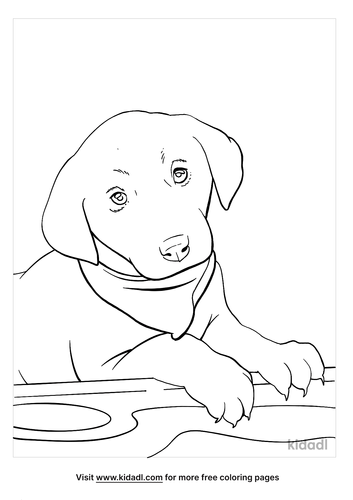 black lab coloring page_4_lg.png