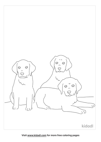 black-lab-puppies-coloring-page.png