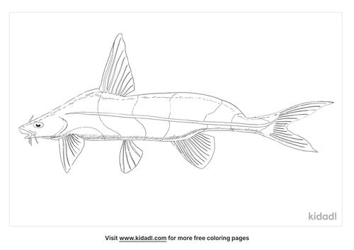 black-lancer-catfish-coloring-page