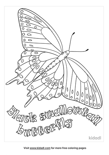 black-swallowtail-butterfly-coloring-page.png