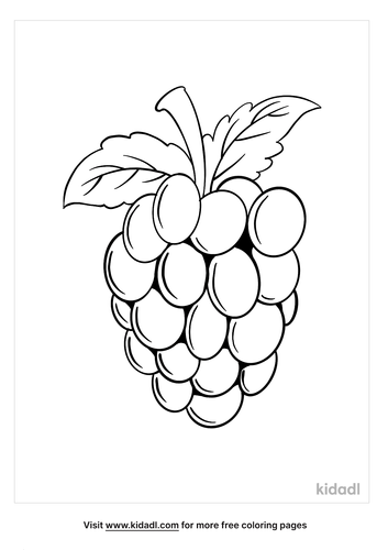 blackberry coloring page_2_lg.png