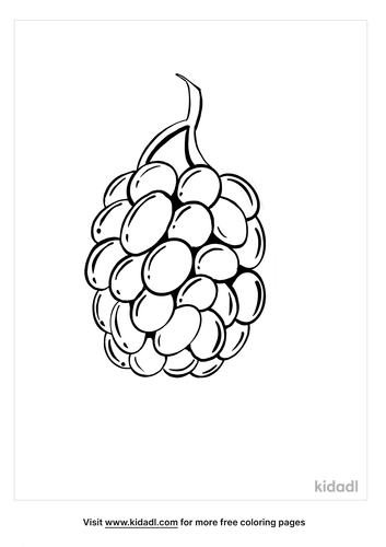 blackberry coloring page_4_lg.png