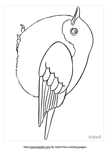 blue bird coloring page-3-lg.png