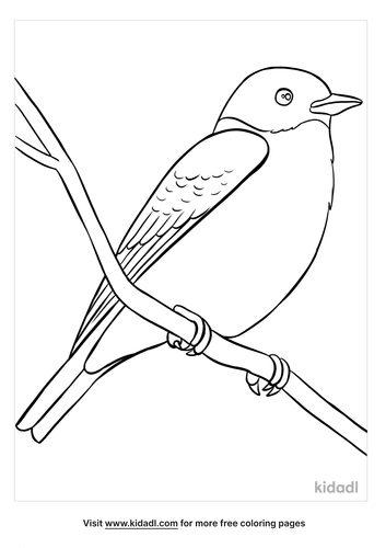 blue bird coloring page-5-lg.png