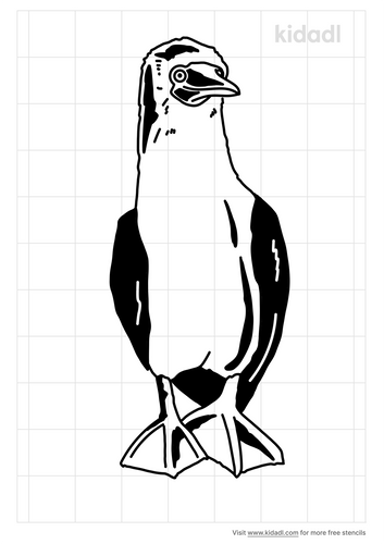 blue-footed-boobie-stencil.png
