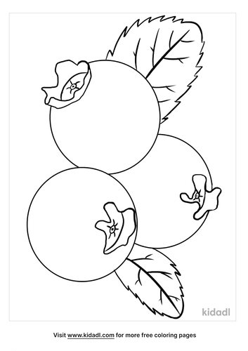 blueberries coloring page-1-lg.png