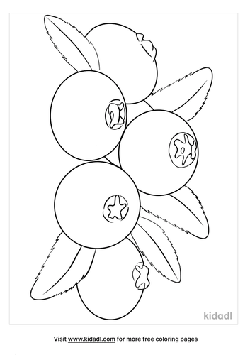 blueberries coloring page-5-lg.png