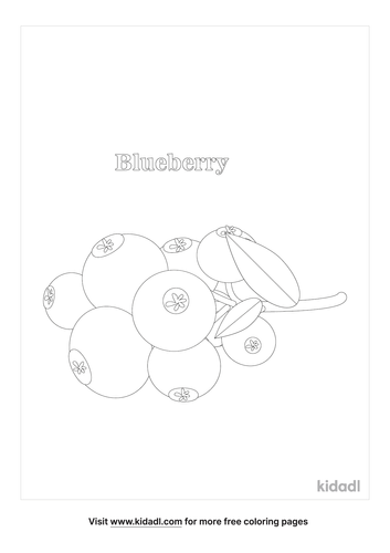 blueberry-bushes-coloring-page.png