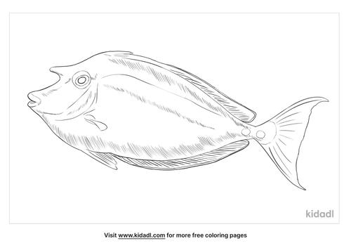 bluespine-unicornfish-coloring-page