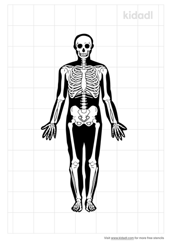 body-outline-with-bones-stencil.png