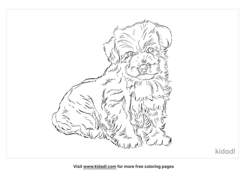 bolognese-coloring-page