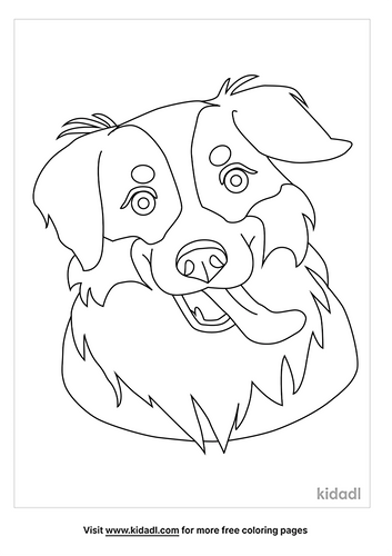 border-collie-coloring-pages-1-lg.png