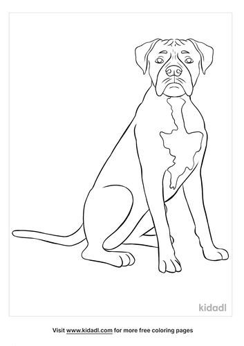 boxer coloring page-2-lg.png