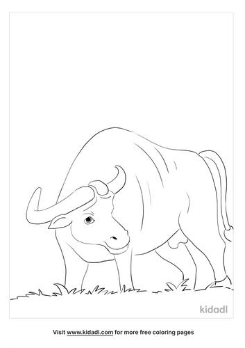 buffalo coloring page_2_lg.png