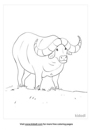 buffalo coloring page_5_lg.png