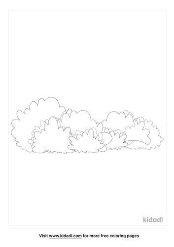 bush-coloring-pages-1-lg.jpg