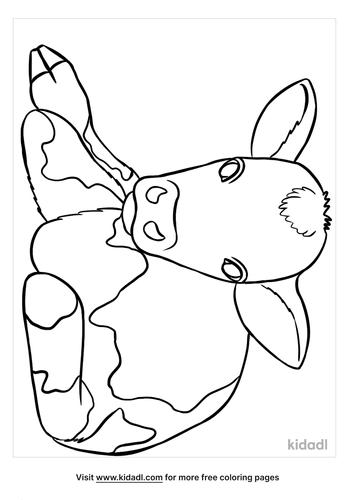 calf coloring page-4-lg.png