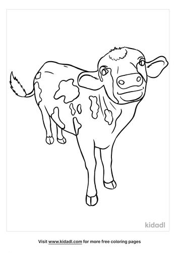 calf coloring page-5-lg.png
